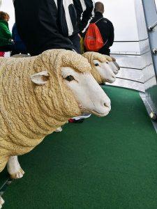 羊のチェア